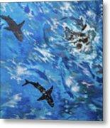 Sharks#3 Metal Print