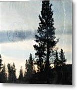 Shasta Trinity National Forest Sunrise Portrait Metal Print