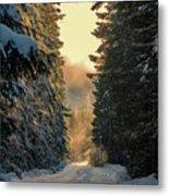 Shawnigan Winter Road Metal Print