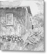 Shed In My Mothers Back Yard Metal Print