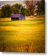 Shed In Sunlight Metal Print