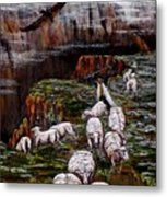 Sheep In The Mountains  Metal Print