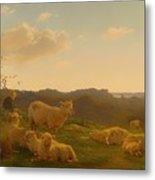 Sheep On A Hill Near Skarridso Metal Print