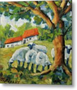 Sheep On The Farm Metal Print