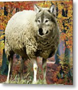 Sheep's Clothing Metal Print