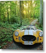 Shelby Ac Cobra In The Woods Metal Print