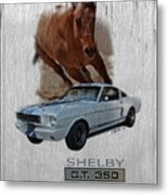 Shelby Gt350 Metal Print
