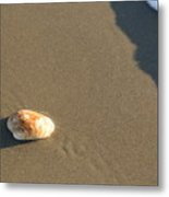 Shell And Waves Part 2 Metal Print