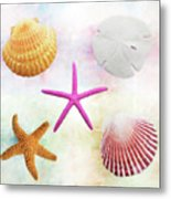 Shells Background Metal Print