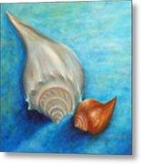 Shells In Blue Metal Print