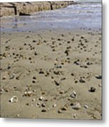 Shells On The Beach Metal Print