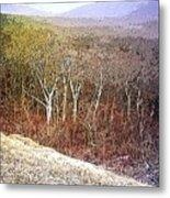 Shenandoah Wilderness Metal Print
