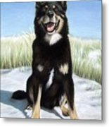 Shepherd Mix Timmy Metal Print