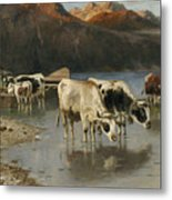 Shepherd With Cows On The Lake Shore Metal Print