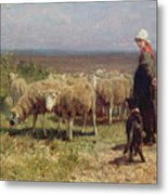 Shepherdess Metal Print by Anton Mauve