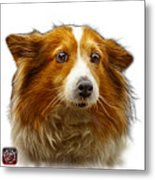 Shetland Sheepdog Dog Art 9973 - Wb Metal Print