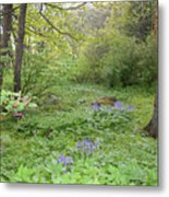 Shetland Woods Metal Print