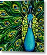 Shimmering Feathers Of A Peacock Metal Print