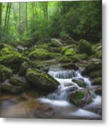 Shining Creek Metal Print