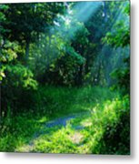 Shining Light Metal Print