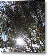 Shinning Sun Metal Print