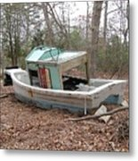 Shipwrecked In The Pinelands Metal Print