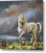 Shire Stallion Metal Print
