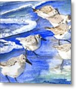 Shore Birds Metal Print