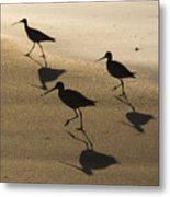Shorebird Silhouettes Metal Print