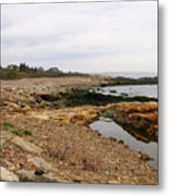 Shoreline Gloucester Massachusetts Metal Print