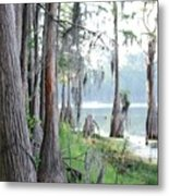 Shores of Compass Lake Metal Print