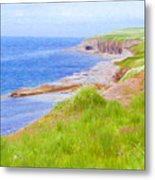 Shores Of Newfoundland Metal Print