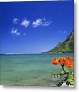 Shorline With Flower Metal Print