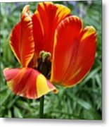 Show Your Heart Metal Print