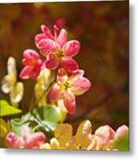 Shower Tree Blossoms Metal Print