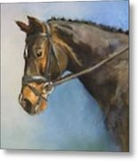 Showhorse Metal Print