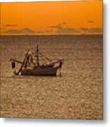 Shrimping In The Morning Metal Print