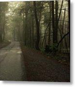 Shrouded Path Metal Print