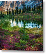Shuksan Autumn Metal Print