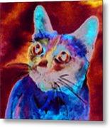 Siamese Cat Metal Print by Christy  Freeman