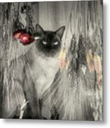 Siamese Cat In Black And White Metal Print
