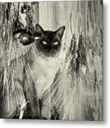 Siamese Cat Posing In Black And White Metal Print