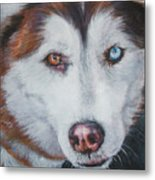 Siberian Husky Red Metal Print