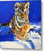 Siberian Tiger Cub Metal Print