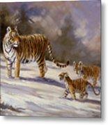 Siberian Tiger Family Metal Print
