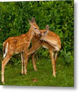 Sibling Love Metal Print