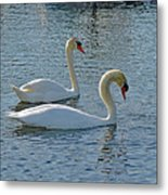 Side By Side For Life  Metal Print