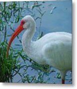 Side Profile Metal Print