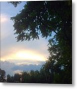 Side Ways Glance Of Nature Metal Print
