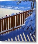 Side Yard Snow Metal Print